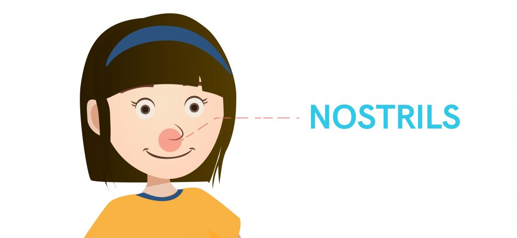 Haze in Singapore: Effects on Sinus Problems   Health Plus